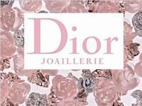 永不凋零的玫瑰 Dior 2016La Rose珠宝系列广告